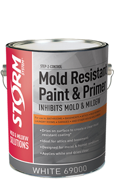 Two Great Products To Keep Mold From Coming Back